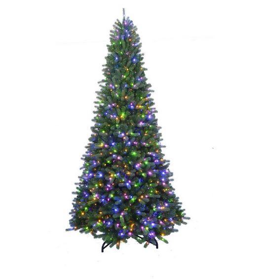 tree1 2